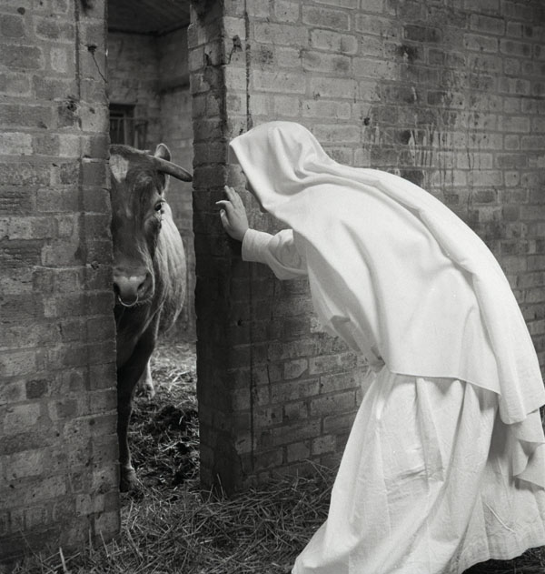 Nuns Working On A Farm Bridget Bishop Photography